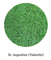 st. augustine palmetto for sale by pallet